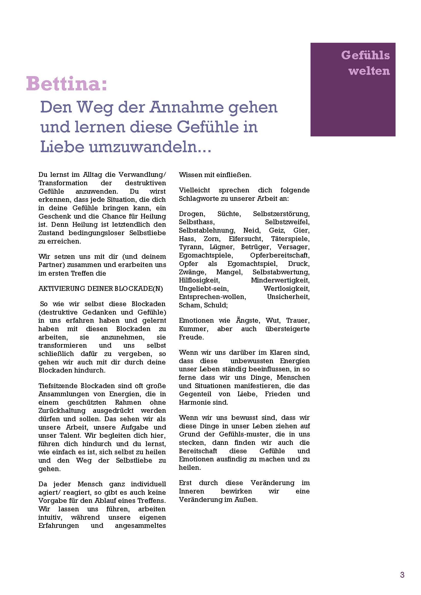 Folder_Vonach_Seite_3